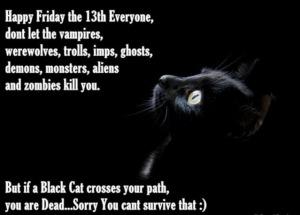 friday13 black cat